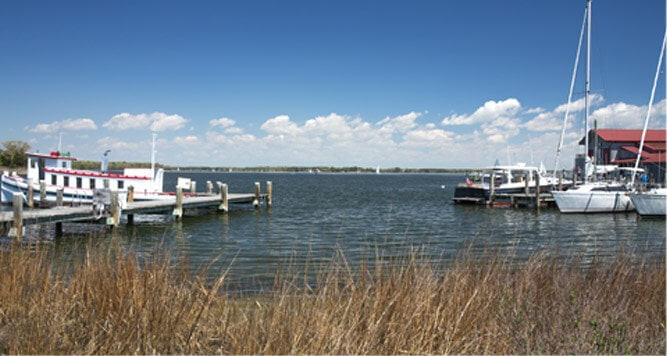 boats and at a dock on the water with tall grass in front